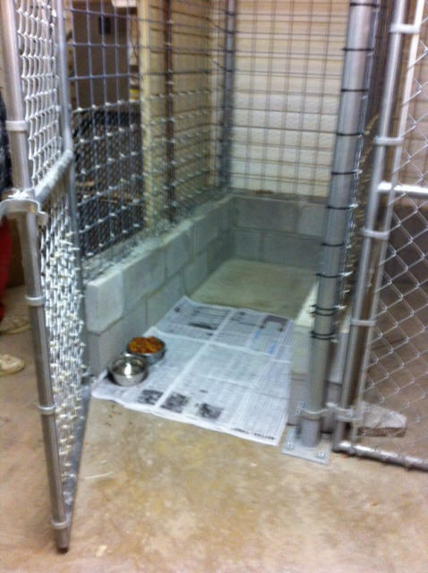 Lone Pine Shelter - Facilities - Dog Kennel